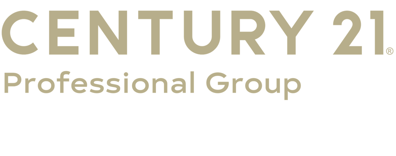 Steven Metzger of CENTURY 21 Professional Group logo