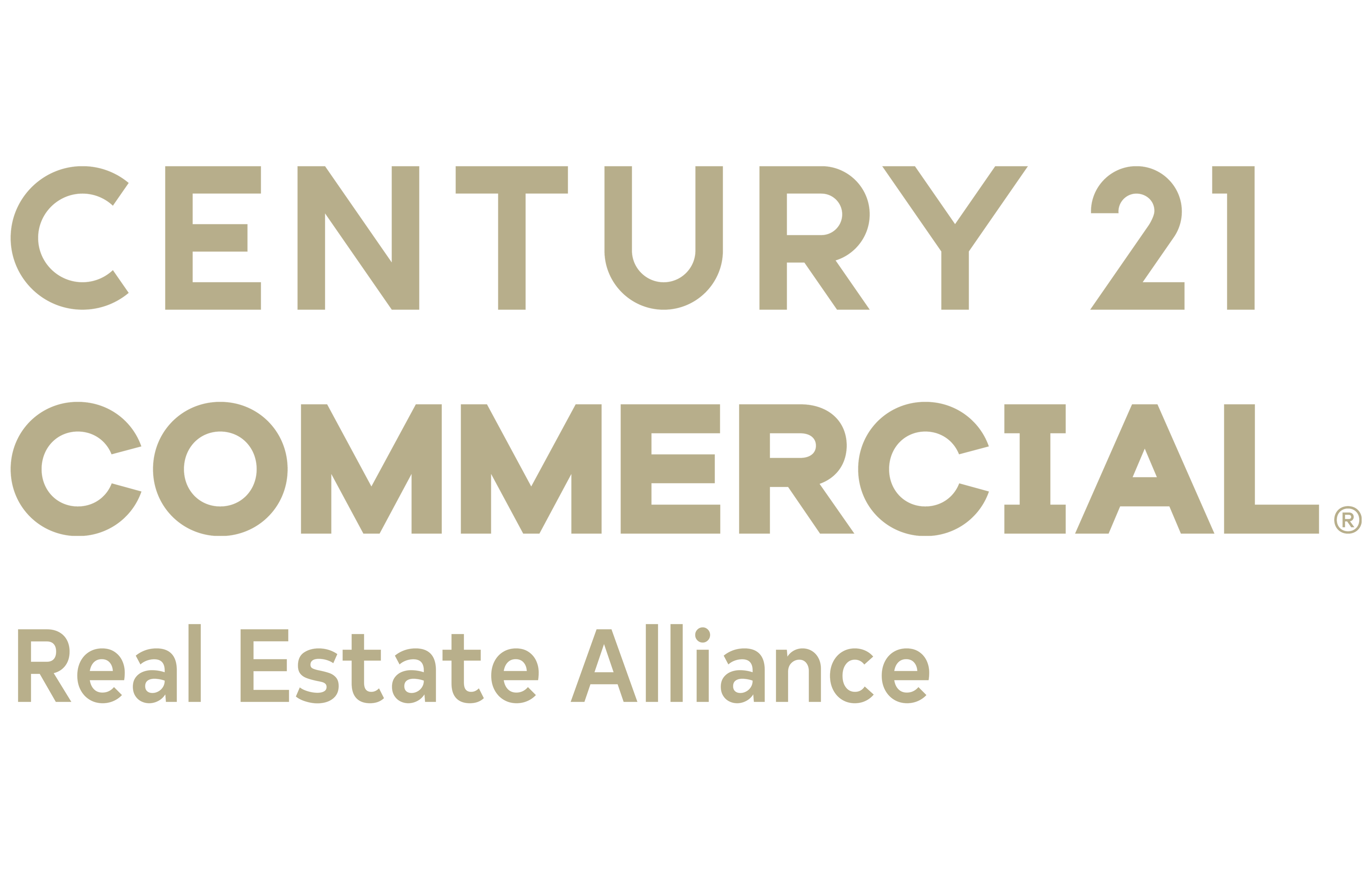 The Vision Team of CENTURY 21 Real Estate Alliance logo