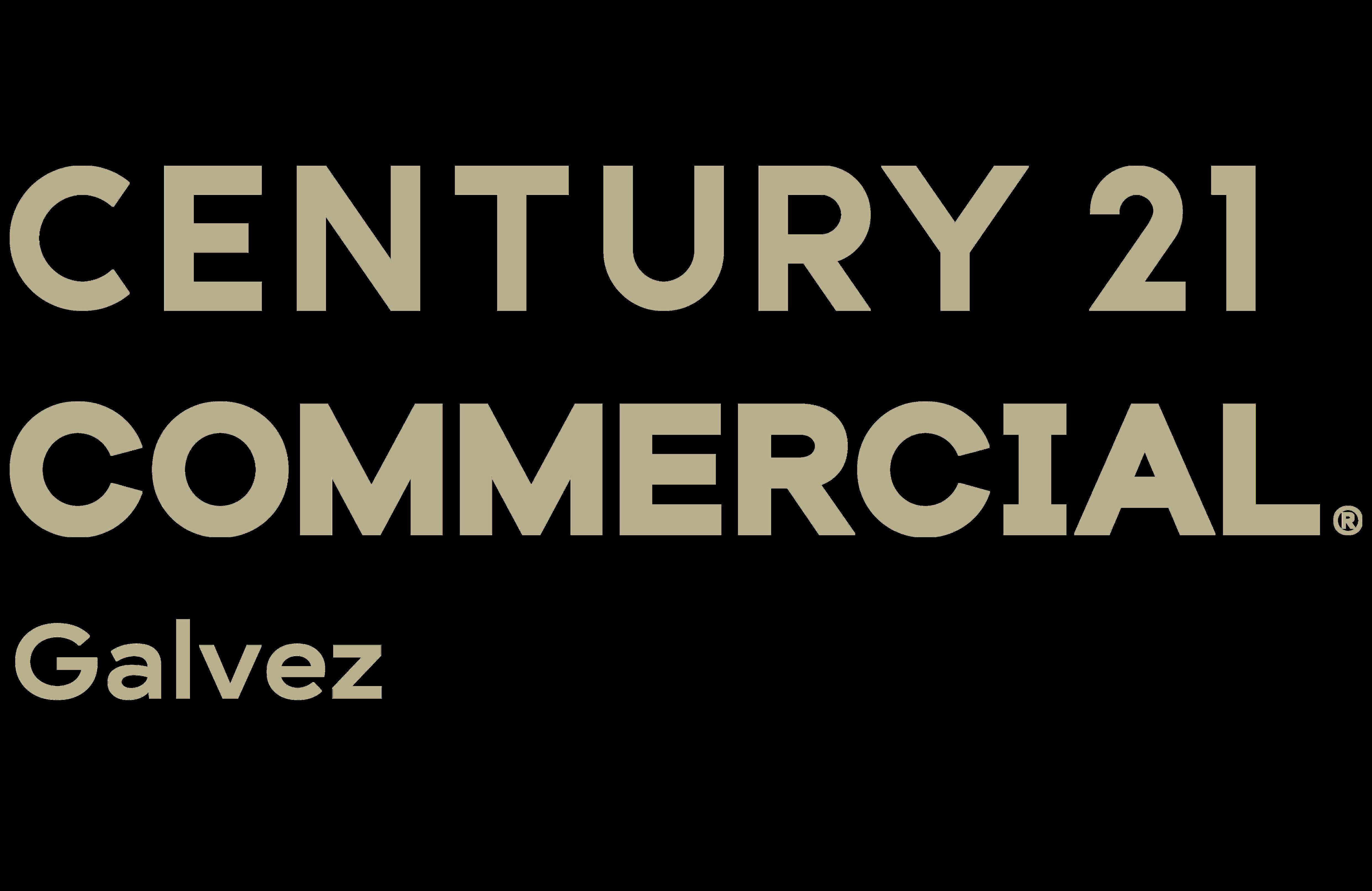 Alexander Galvez of CENTURY 21 Galvez logo